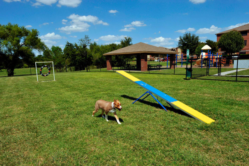 Carrollton Park of North Dallas offers a unique dog park in Dallas, Texas