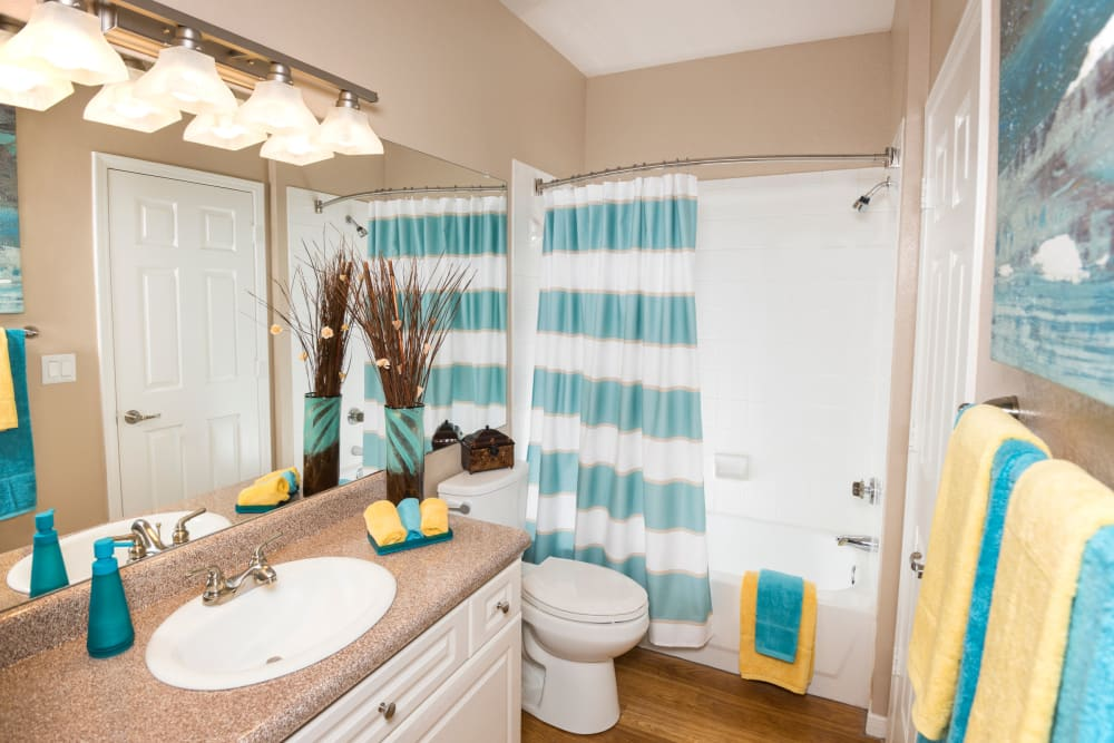 Luxury bathroom at Crescent Cove at Lakepointe in Lewisville, Texas