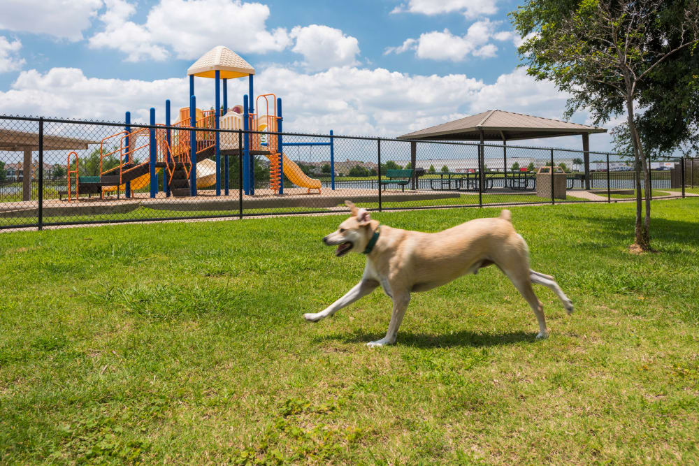 Crescent Cove at Lakepointe offers a unique dog park in Lewisville, Texas