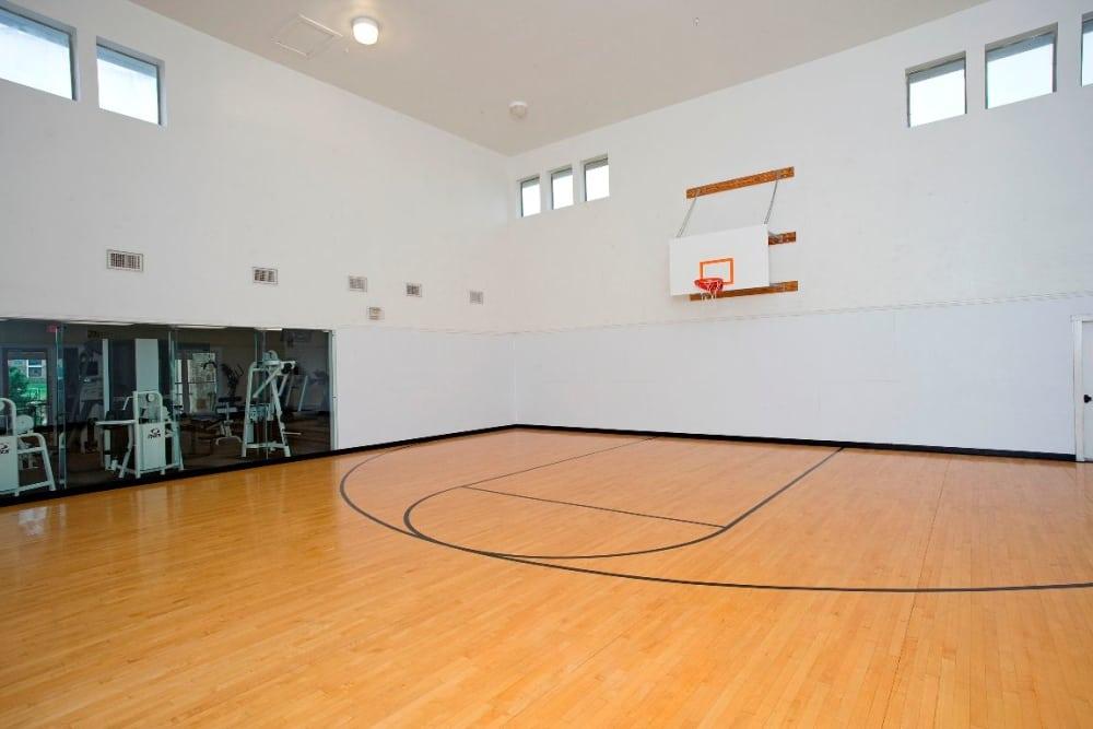 Basketball court at El Lago Apartments in McKinney, Texas