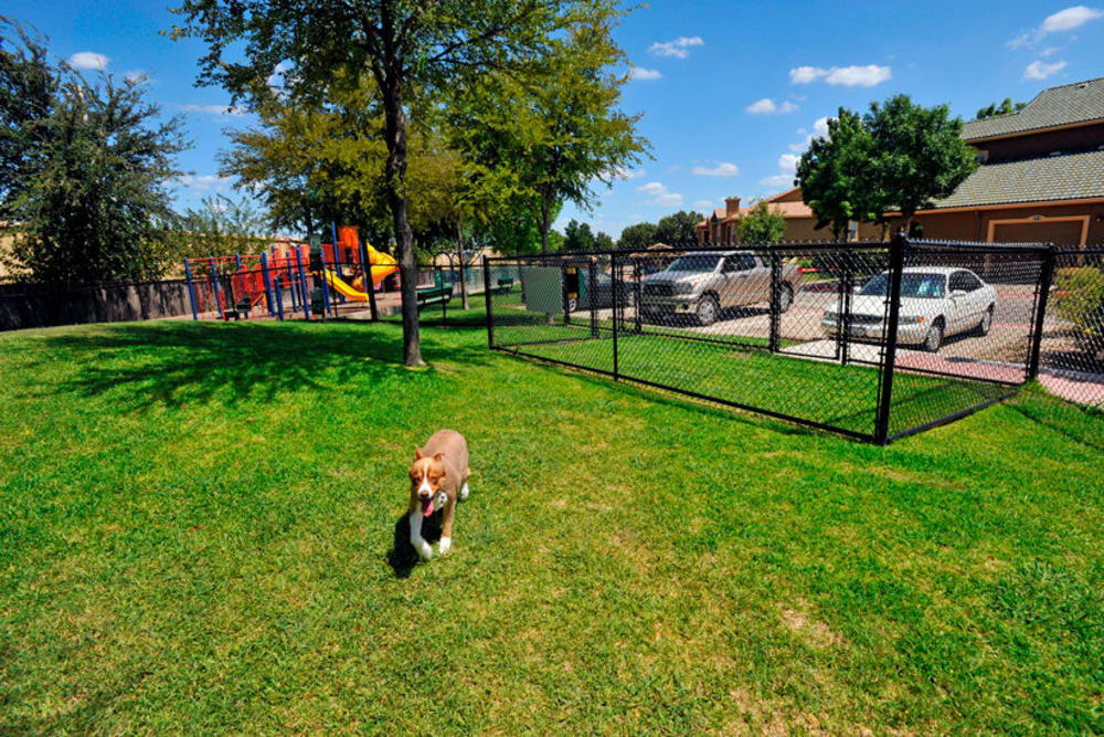 Dog park at Estates on Frankford in Dallas, Texas