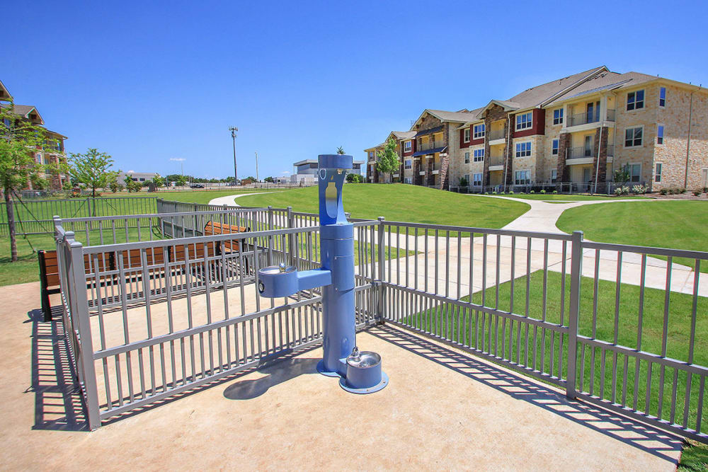 Estates of Richardson offers a unique dog park in Richardson, Texas