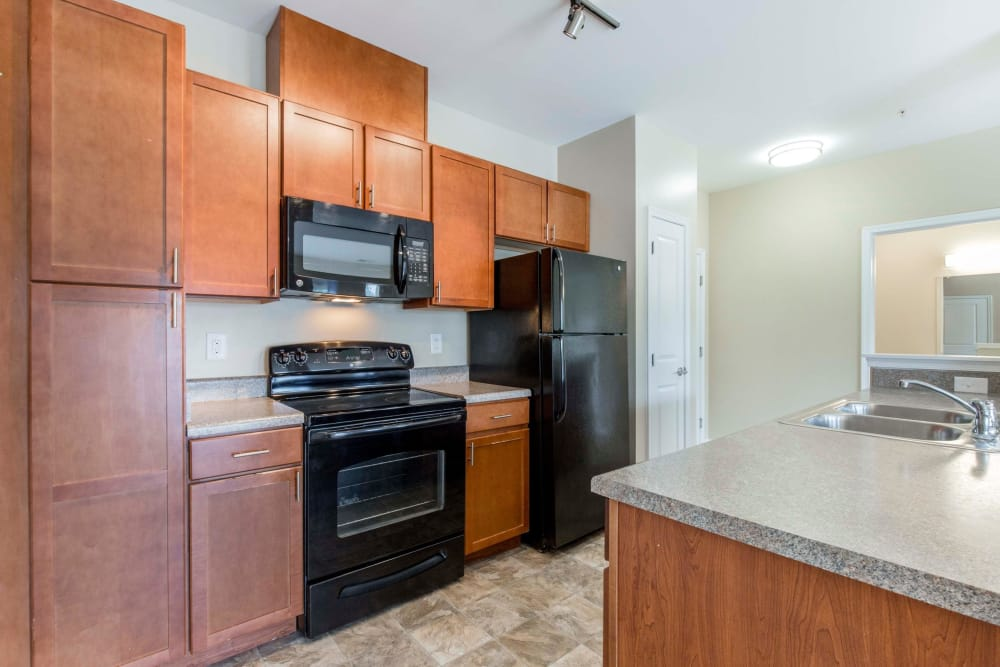Enjoy apartments with a spacious kitchen at Orchard Meadows Apartment Homes
