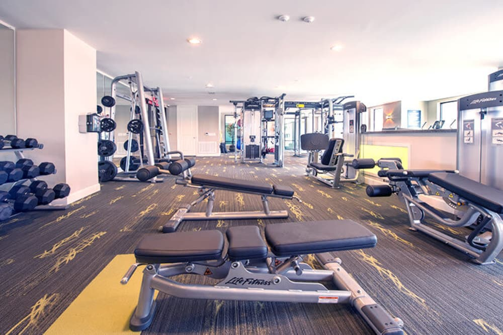 Gym view at Imperial Lofts in Sugar Land, Texas