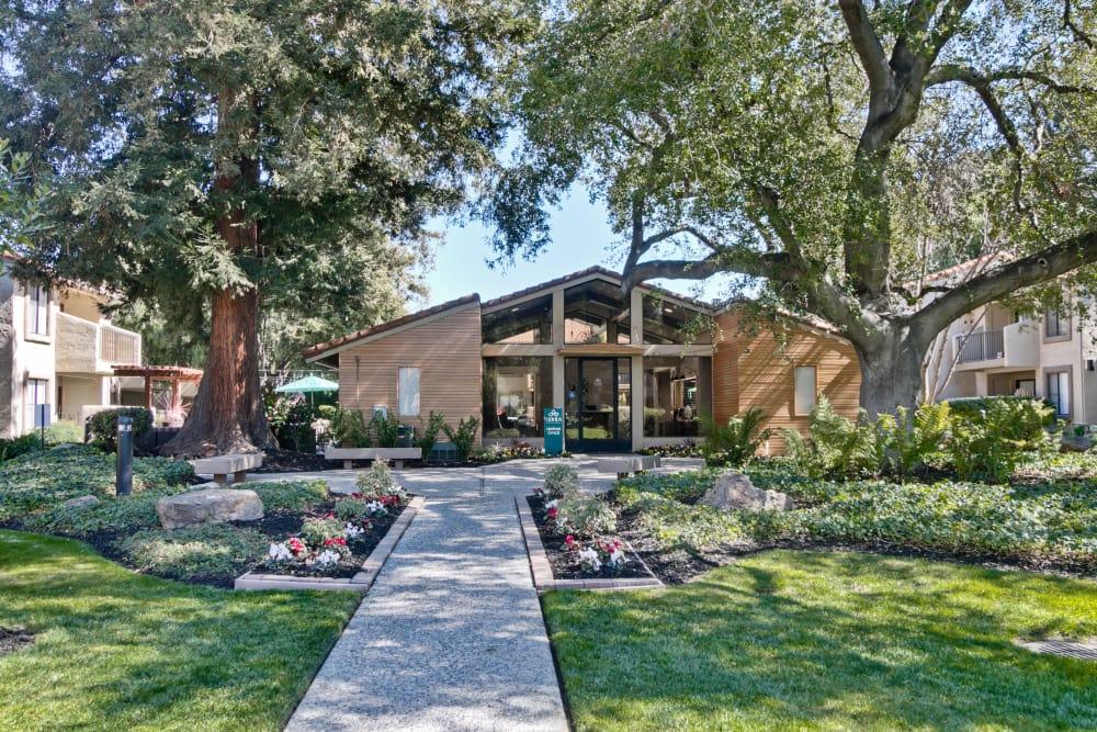 San Jose Ca Luxury Apartments Terra Willow Glen Apts