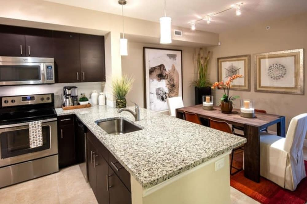 Photos Of Casa Vera Luxury Apartments In West Miami Fl