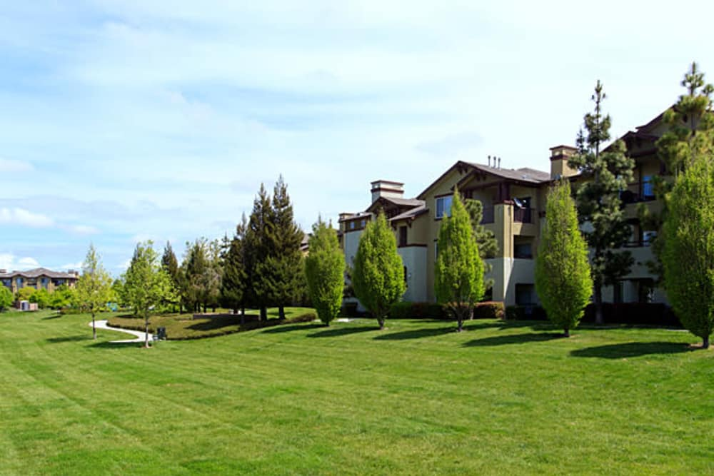 Well manicured lawn at The Lodge at Napa Junction in American Canyon, California