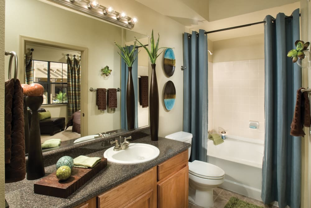 Bathroom at Las Colinas at Black Canyon in Phoenix, Arizona