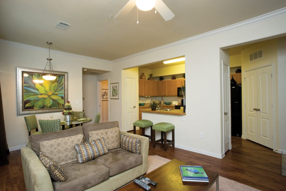 Onion Creek Luxury Apartments offers a spacious living room in Austin, Texas