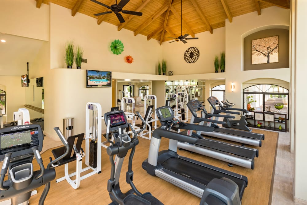 Enjoy apartments with a modern fitness center at San Antigua in McCormick Ranch in Scottsdale, Arizona