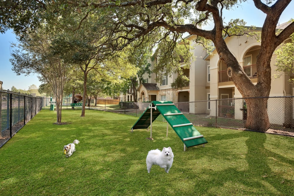 Dog park at Sedona Ranch Apartments in San Antonio, Texas