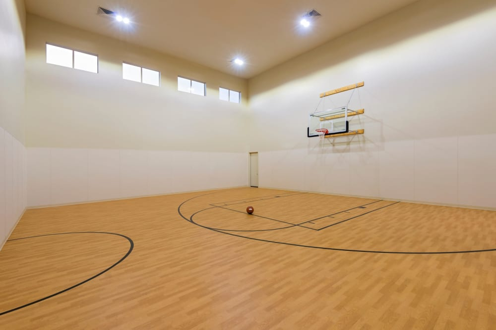 Southern Avenue Villas offers a modern basketball court in Mesa, Arizona