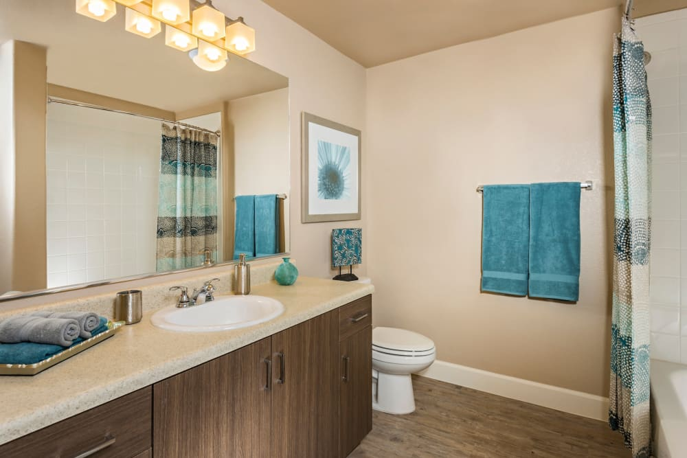 Bathroom at Southern Avenue Villas in Mesa, Arizona