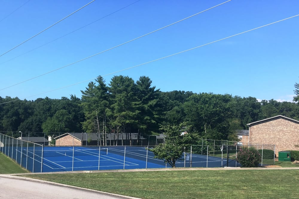Tennis courts at Deane Hill in Knoxville, Tennessee