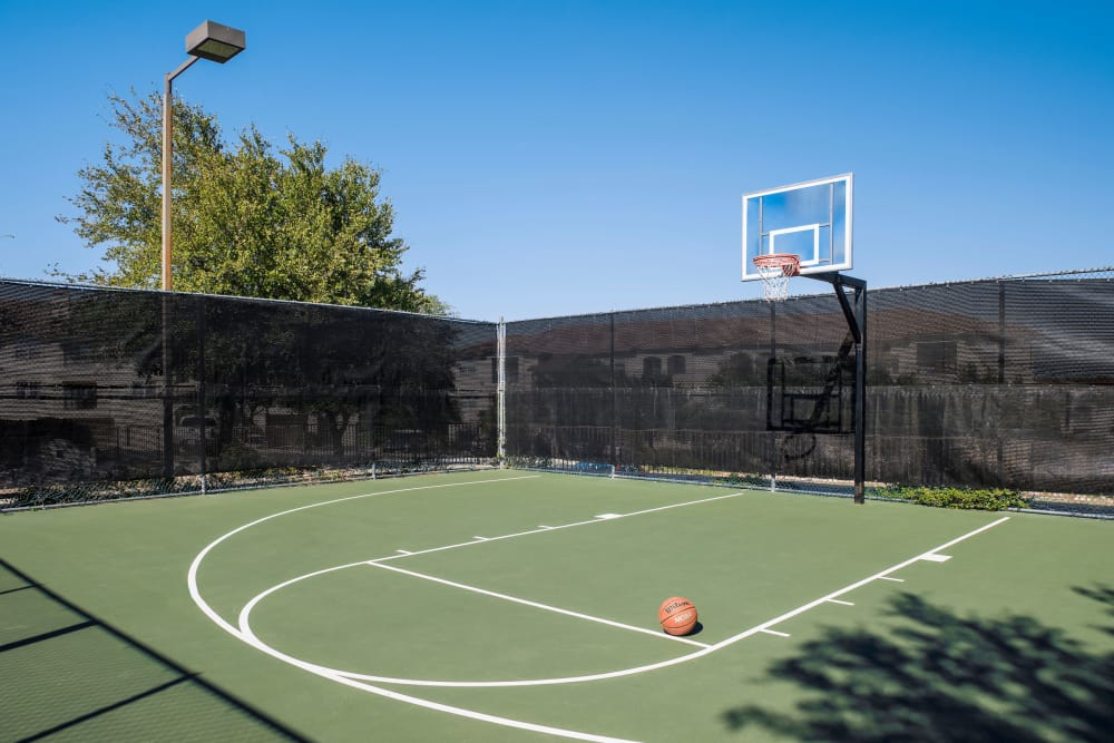 Mira Vista at La Cantera offers a modern basketball court in San Antonio, Texas