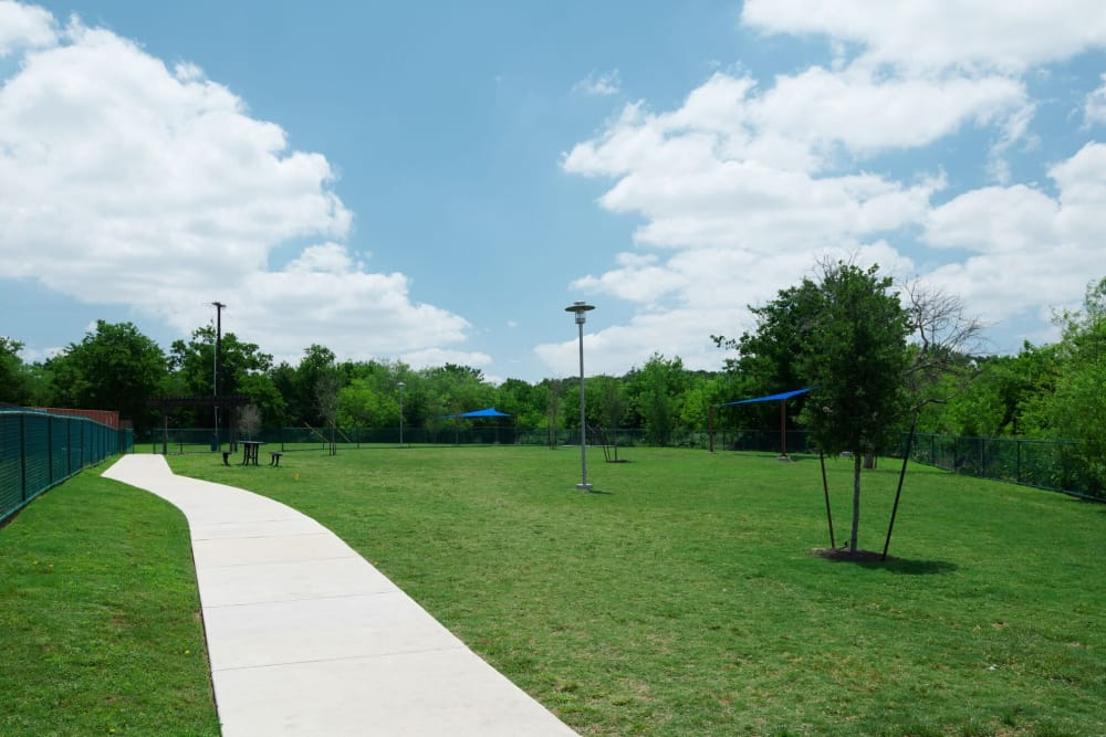 Dog Park at Parallax Georgetown