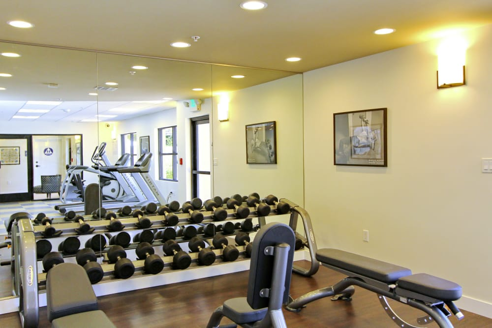 Free weights and more in fitness center at IMT Magnolia in Sherman Oaks, CA