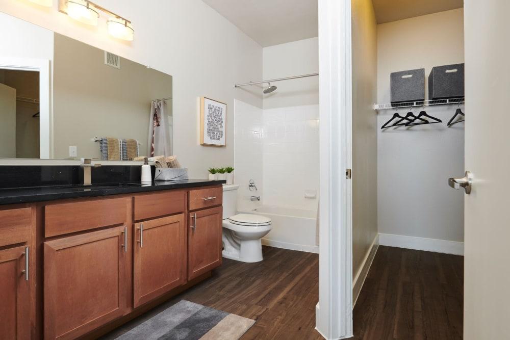 Apartment Bathroom & Closet