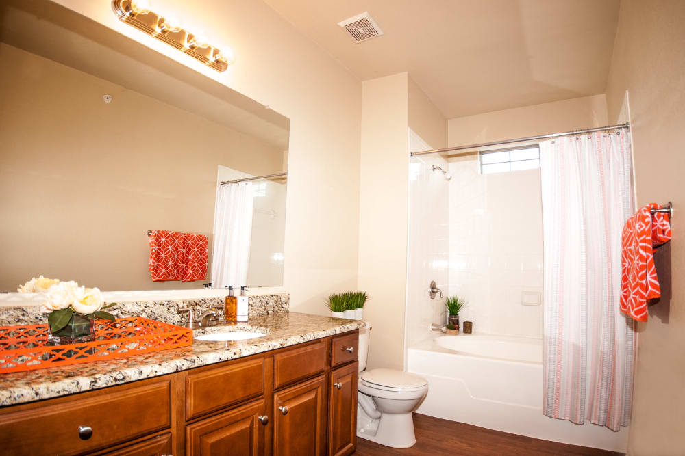 Bathroom at Villas of Vista Del Norte in San Antonio, Texas