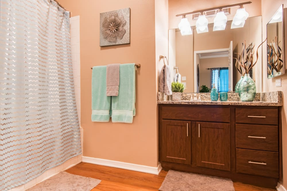 A bathroom at Villas of Preston Creek in Plano, Texas
