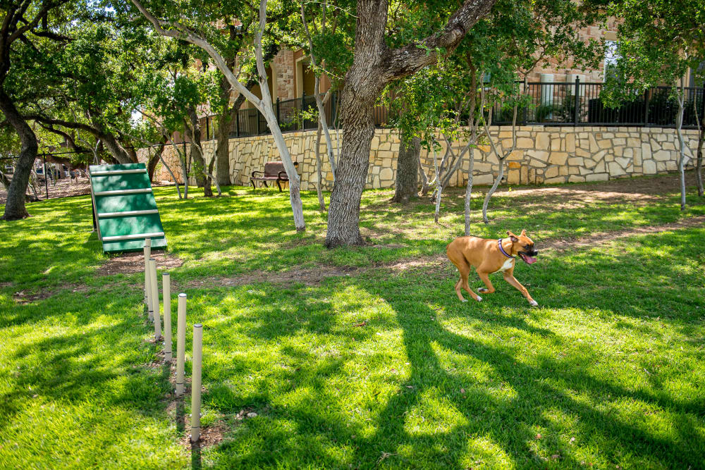 Dog park at Villas in Westover Hills in San Antonio, Texas