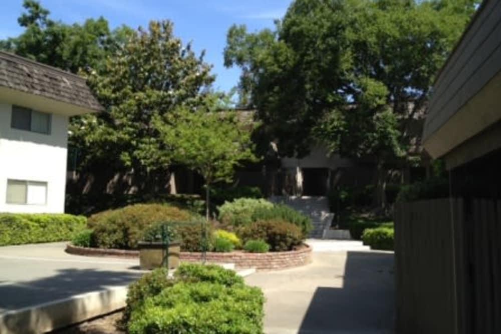 Pathways and landscaping around Hacienda Apartments in Sacramento, CA