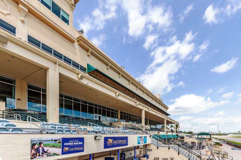 Horse racing near Aliro Apartments in North Miami, Florida