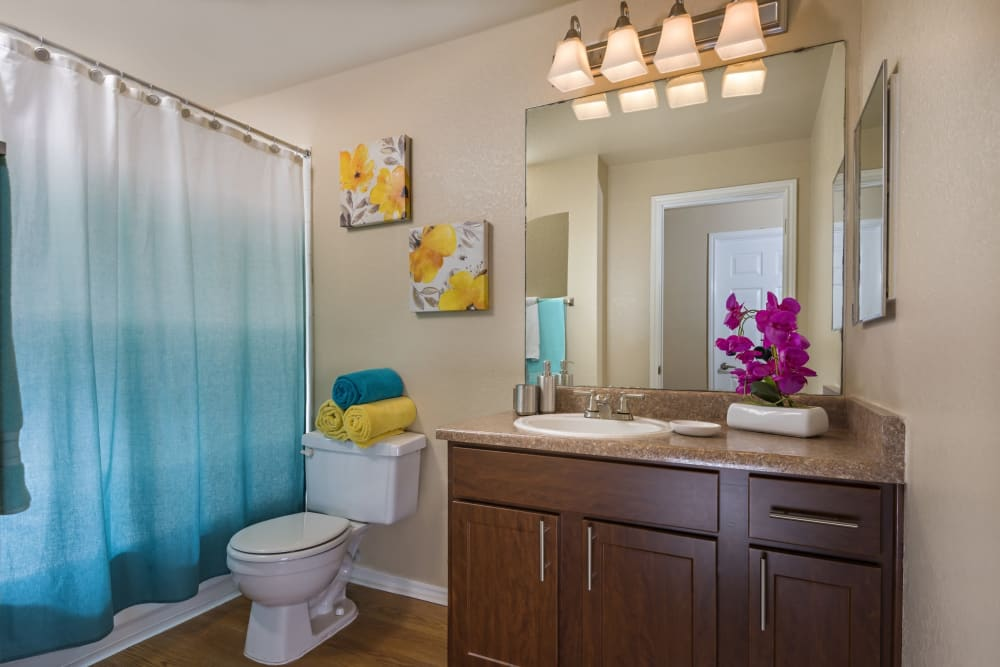 Luxury bathroom at Villas at Oakwell Farms in San Antonio, Texas