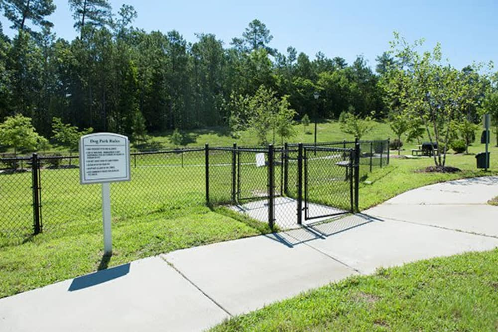 Unique dog park at apartments in Raleigh, North Carolina