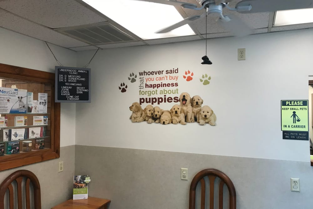 Welcome to Underwood Animal Clinic in La Porte, TX