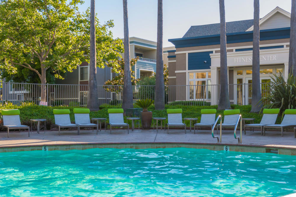 Sparkling pool at Summer House Apartments