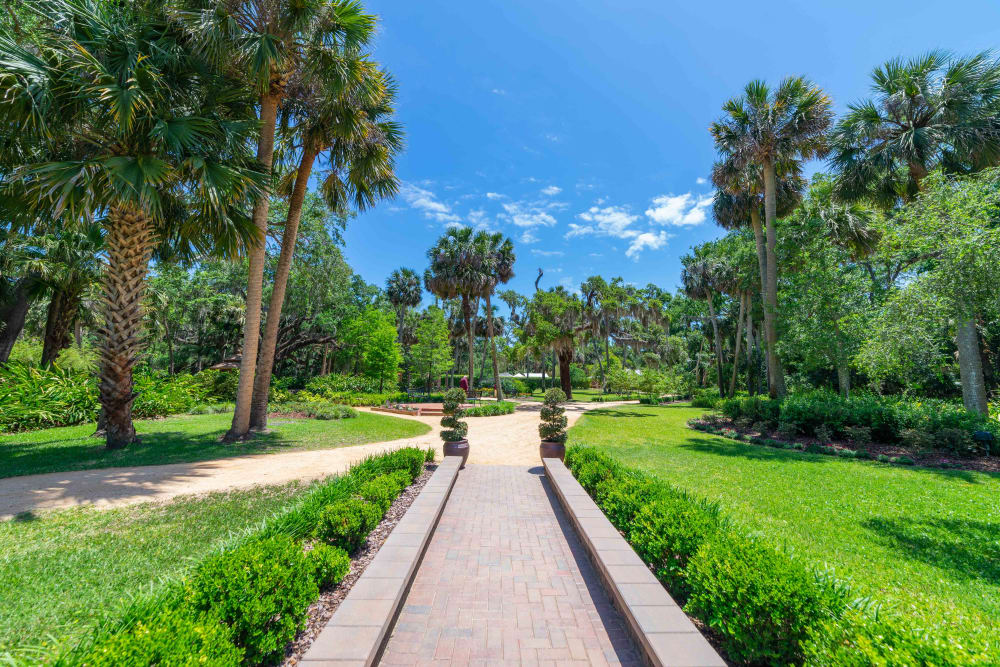 Walk path near at Integra Woods in Palm Coast, Florida