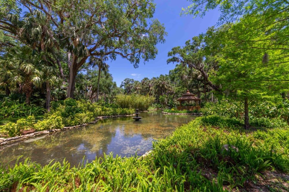 Beautiful lake near at Integra Woods in Palm Coast, Florida