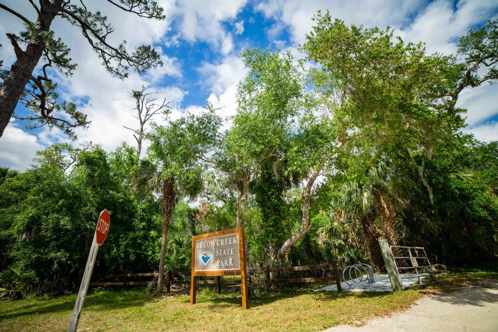BulowCreek State Park near at Integra Woods in Palm Coast, Florida