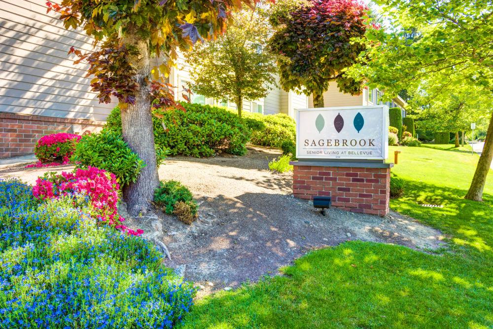 Welcome to Sagebrook Senior Living at Bellevue in WA