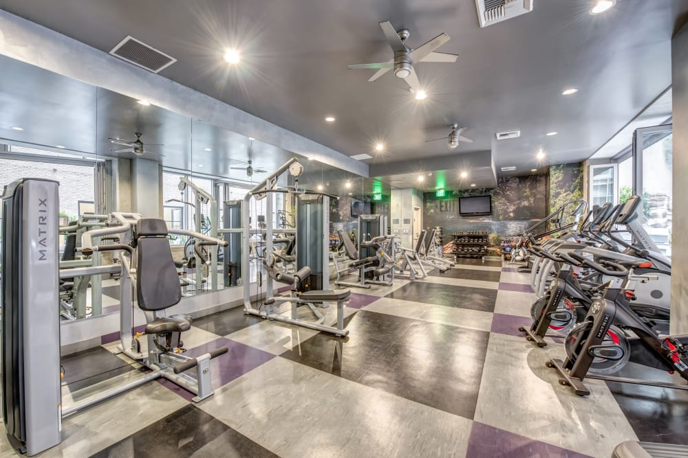 Fitness center at The Roosevelt