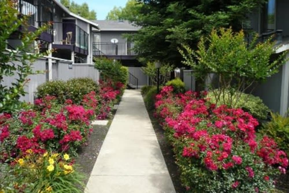 Walkway at Sutter Court Apartments in Carmichael, California