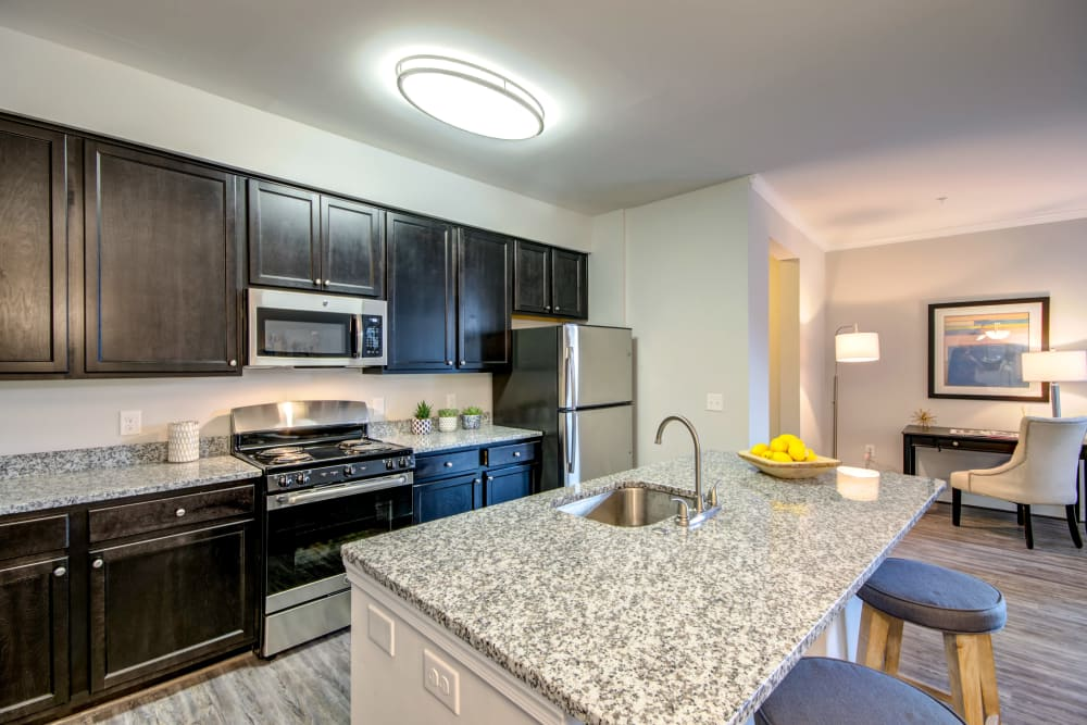 Kitchen with stainless steel appliances at Manassas Station Apartments in Manassas, Virginia