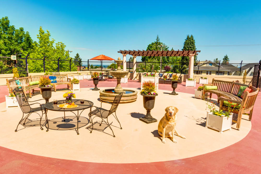 Rooftop patio at Queen Anne Manor Senior Living