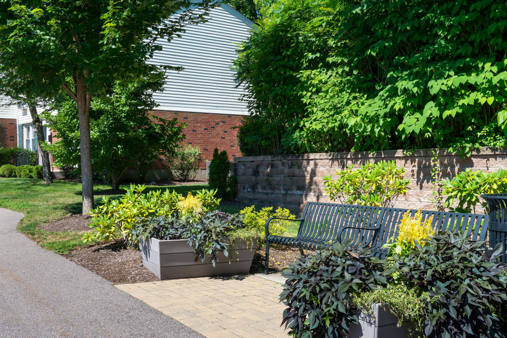 Beautiful landscaping surrounds Stony Brook Commons in Roslindale, Massachusetts