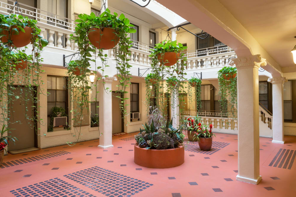 Plants hang in the atrium at Burbank Apartments in Boston, Massachusetts