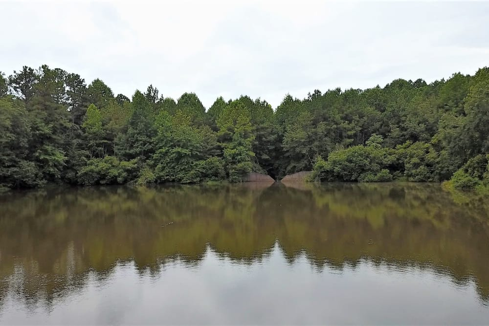 Aerial view of a pond near Lake Crossing in Austell, Georgia