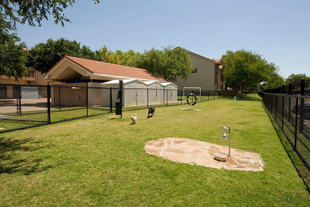 Dog park at Villas of Preston Creek in Plano, Texas