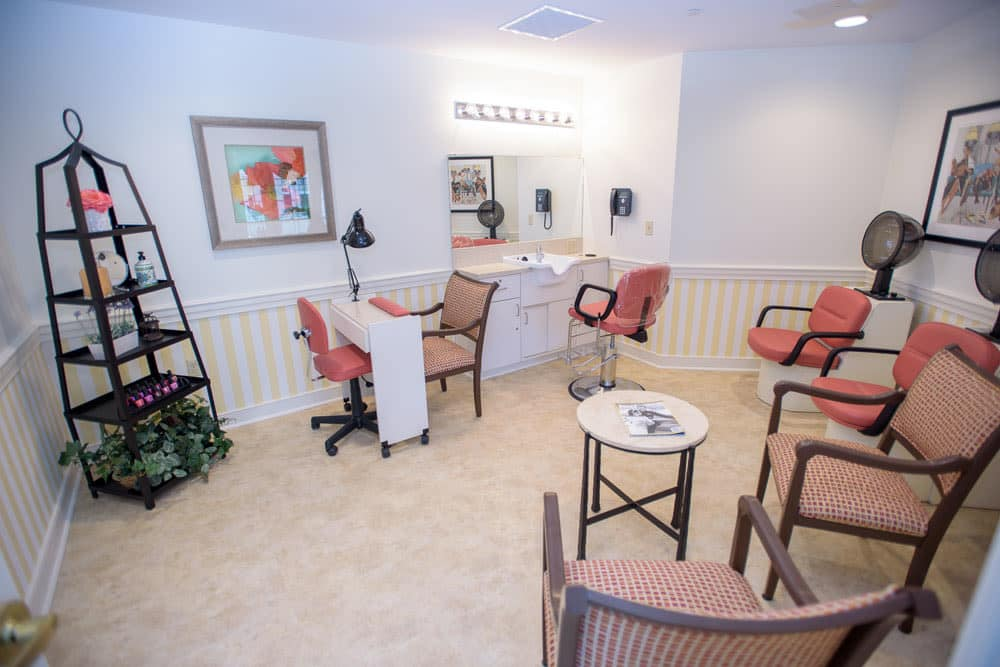 Model living room with pink accents at Artis Senior Living of Bartlett in Bartlett, Illinois