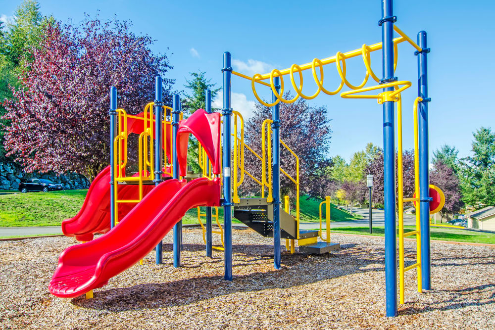 Onsite playground at Montair at Somerset Hill in Tumwater, WA
