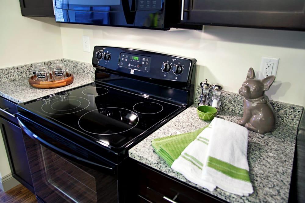Modern kitchen at Watercourse Apartments in Graham, North Carolina