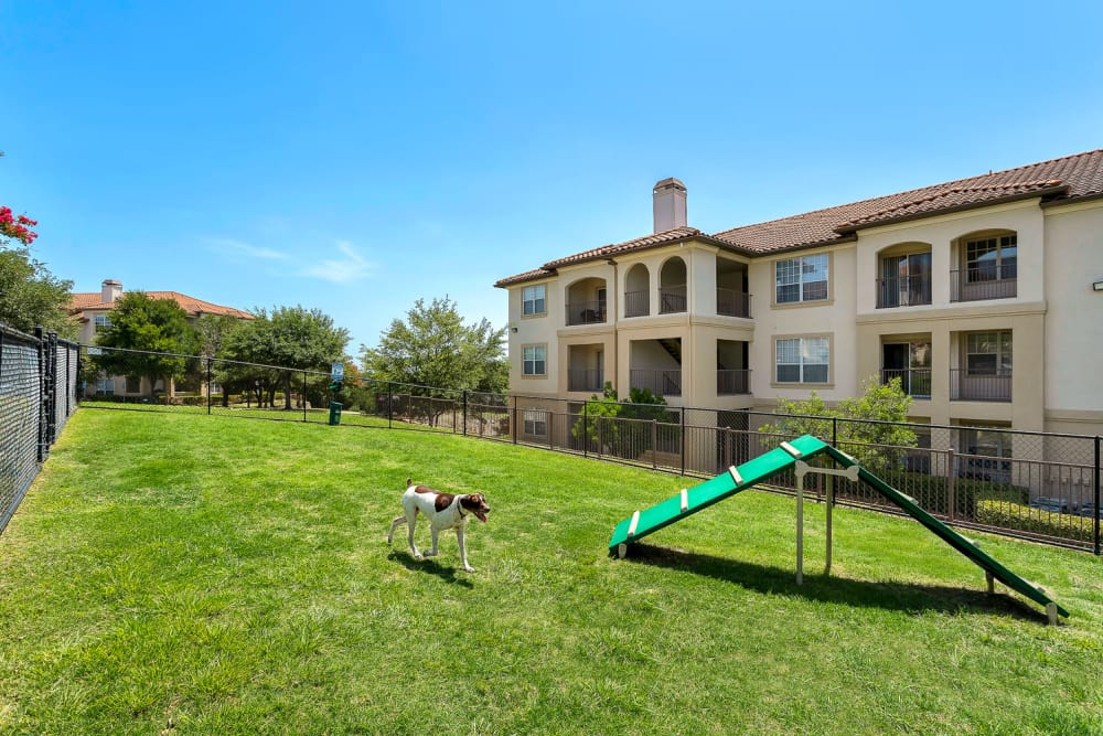 Dog park at Mira Vista at La Cantera in San Antonio, Texas