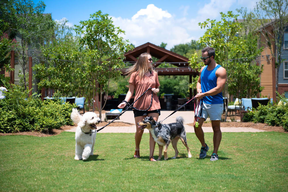 Beautiful pet friendly apartments in Hattiesburg, Mississippi