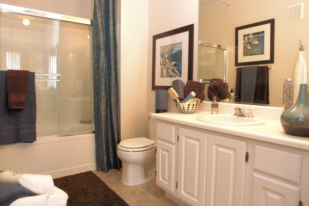 Master bathroom at Alize at Aliso Viejo Apartment Homes in Aliso Viejo, California