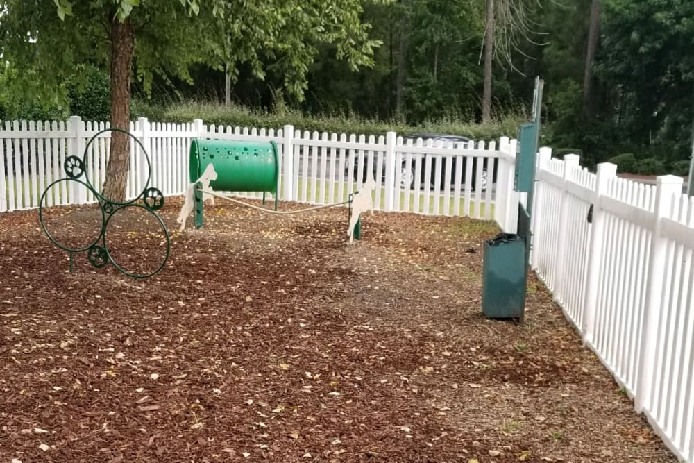 Dog park at Claypond Commons in Myrtle Beach, South Carolina